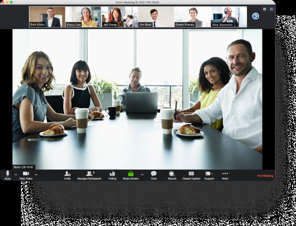 Video Webinar - Zoom